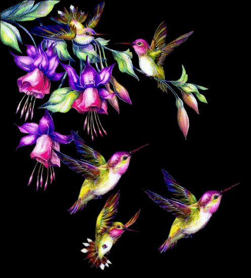 would be great for a tattoo especially since my mother loved fuchsias and I love hummingbirds :)
