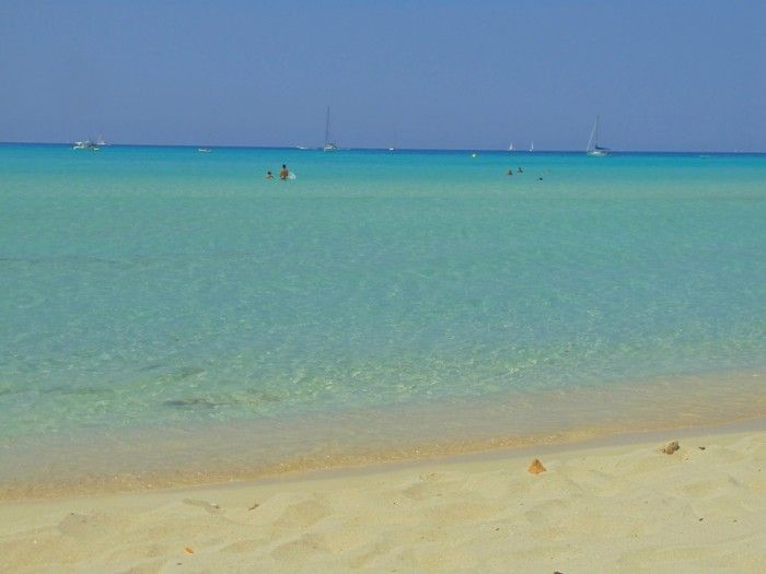 Es Trenc Beach - looks like the Caribbean, wouldn't you say?