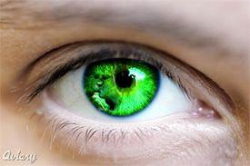 green eyesHome Remedies, Eye Colors, Eye Contact, Brown Eye, Human Eye, Blue Eye, Eye Health, Beautiful Art, Beautiful Eye