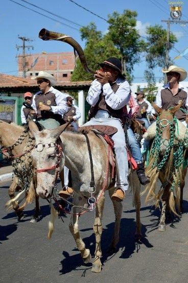 Cavalgada de Imperatriz 2014 - horse parade
