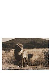 MAJESTIC LION 60X90CM WALL ART