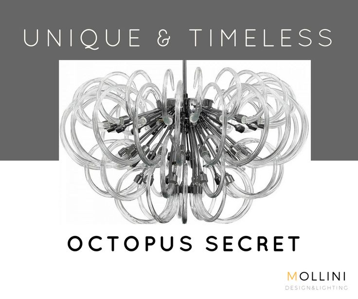 OCTOPUS SECRET #Chandelier made of best quality blown glass. Inspiration for this model was contemplation of nature. You can be traced to find forms and shapes of underwater life forms.   #interior #modernstyle #4_home #mojemieszkanie #wnetrze #lighting #oswietlenie #hanging #chrome #octopus #glass #italian #murano #designers
