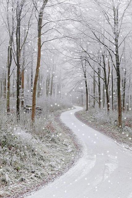 snowy country road - 566bd30156692084450244a72f715bd2.gif (427×640)