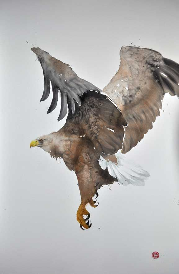 White-tailed Eagle, Kari Martens, artist