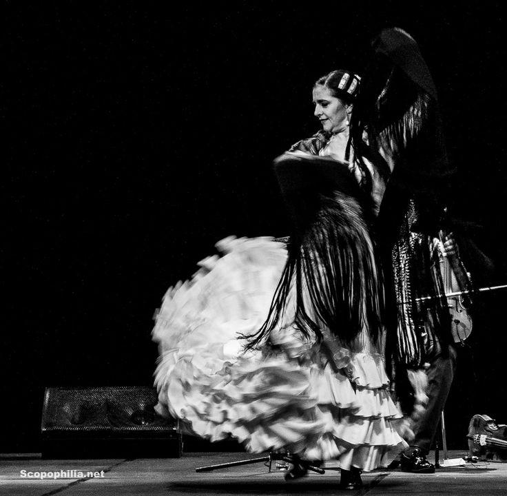 "Flamenco Show ""Chekara – So Close, so Far"""