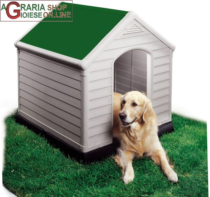 CUCCIA PER CANI DOG HOUSE KETER TETTO COLOR VERDE CM 95x99x99h EXTRA LARGE https://www.chiaradecaria.it/it/cucce-per-cani/4879-cuccia-per-cani-dog-house-keter-tetto-color-verde-cm-95x99x99h-extra-large-7290005554759.html