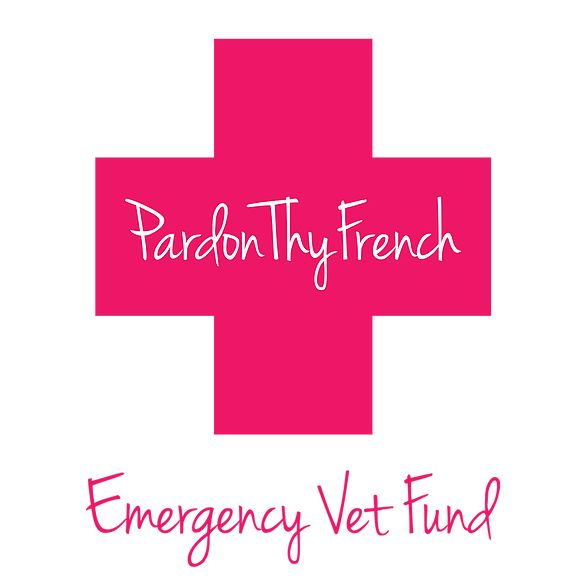PardonThyFrench Emergency Vet Fund hopes to alleviate some of your pain through medical vet bill assistance.