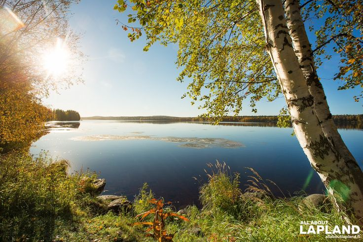 Photo from All About Lapland ‏@allaboutlapland Lovely autumn morning in #Rovaniemi #Lapland #Finland! #ruska #finnishlapland #autumn