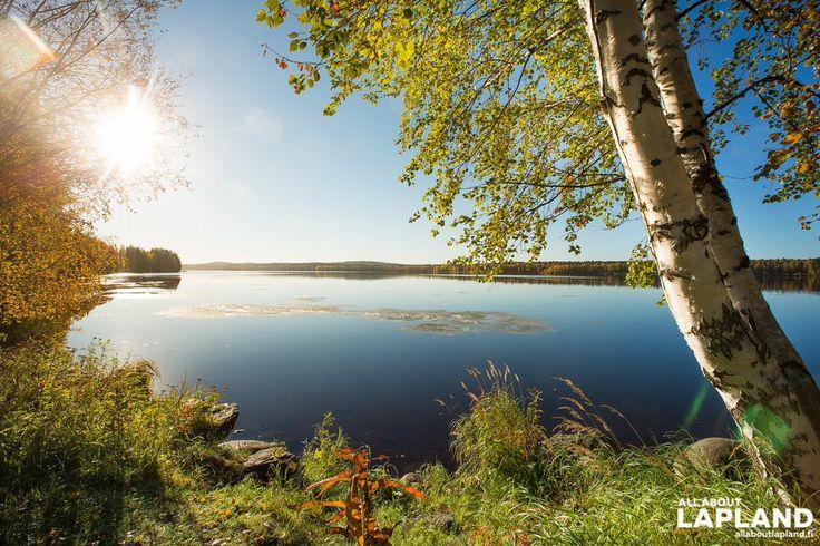 Photo from All About Lapland @allaboutlapland Lovely autumn morning in #Rovaniemi #Lapland #Finland! #ruska #finnishlapland #autumn