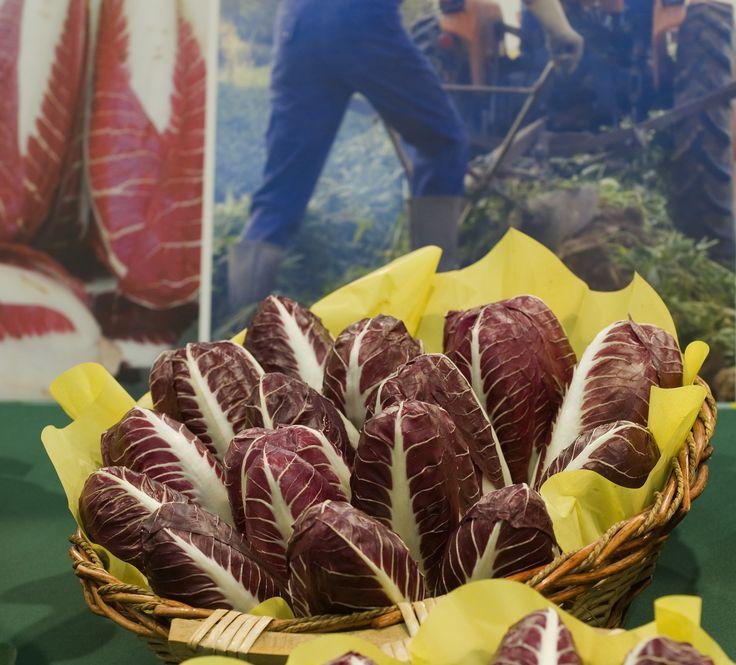 #radicchio #igp #treviso #food
