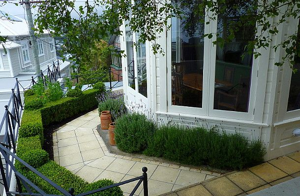 HEDGE Garden Design & Nursery
