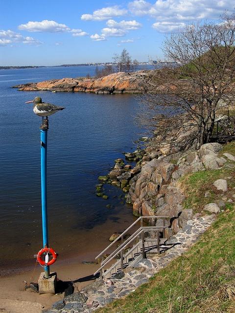 Suomenlinna/Finland: pikniköintiä, käppäilyä, uimista