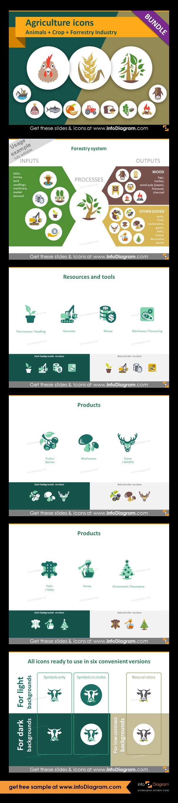 Food and Agriculture icons: Animals, Crop Cultivation, Forestry. All symbols in simple flat style, suitable for Metro UI style graphics. Icons provided in 5 versions. Graphic presenting forestry process with icons of inputs and outputs. Products from forestry and wood industry:  fruits, mushrooms, wildlife, pelts, honey, ornamental. Example of six symbol versions. Use Forestry and wood industry icons for presentation or infographics related to this agricultural sector.