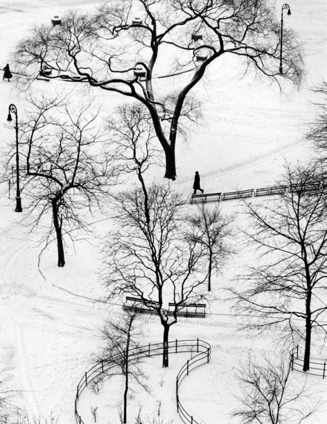 André Kertész Washington Square New York, January 9, 1954