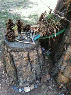 Go Explore Nature: Build a Dragon Cave