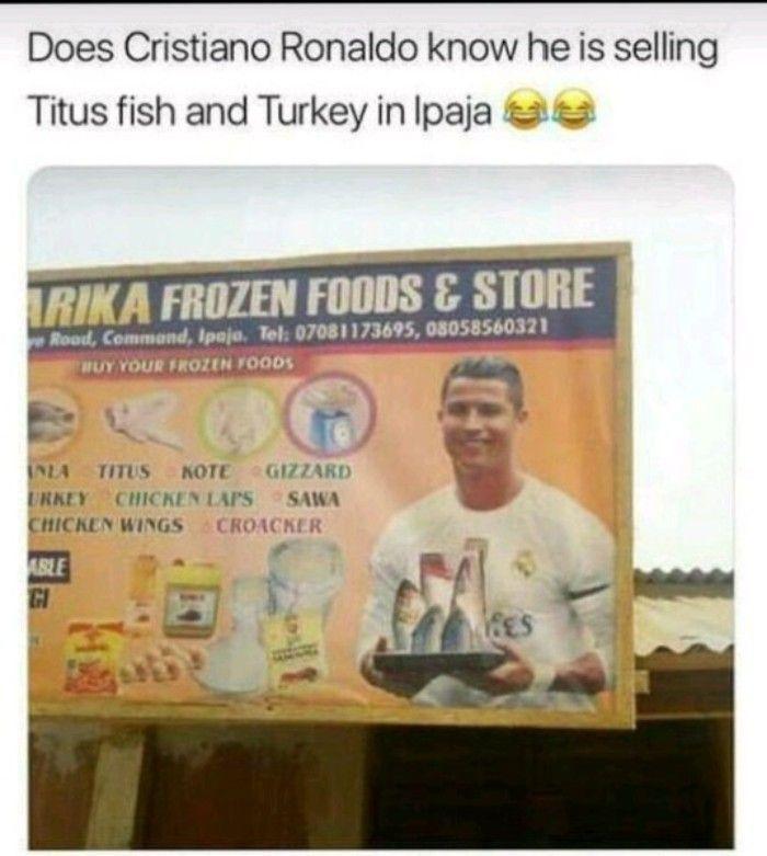 Copyright Has No Value In Turkey Memes Best Funny Photos Funny Photos Memes