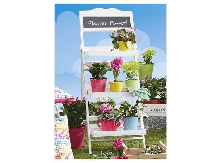 In dit plantenrek kun je heel veel planten en bloemen kwijt, zonder dat dit veel ruimte in beslag neemt. Daarnaast ziet het er ook nog eens leuk uit. Op het krijtbordje bovenaan kun je bovendien een vrolijke boodschap tekenen of schrijven.