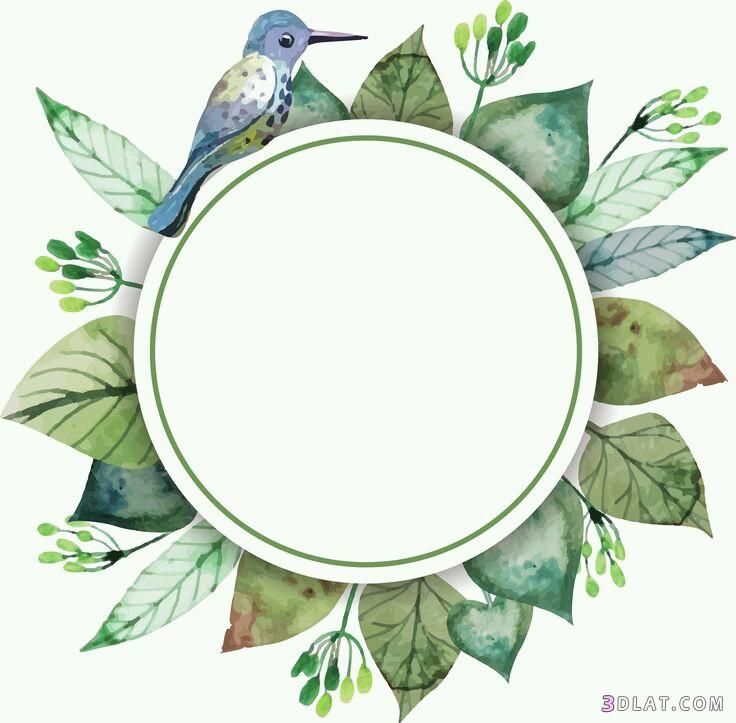 اطارات ورود فارغه للتصميم اجدد الاطارات 3dlat Com 27 18 C360 Flower Frame Wreath Watercolor Watercolor Flowers
