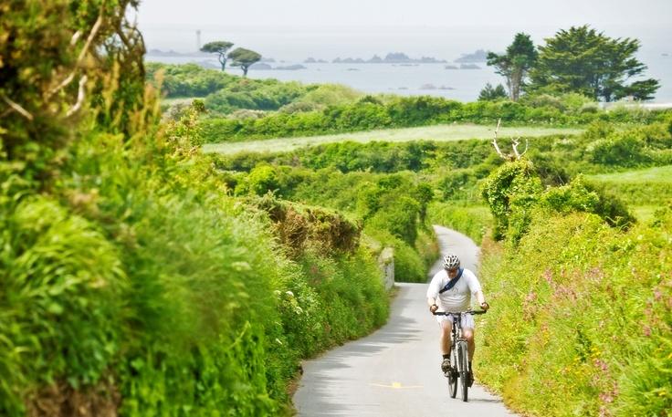 Cycling through green lanes, Guernsey.