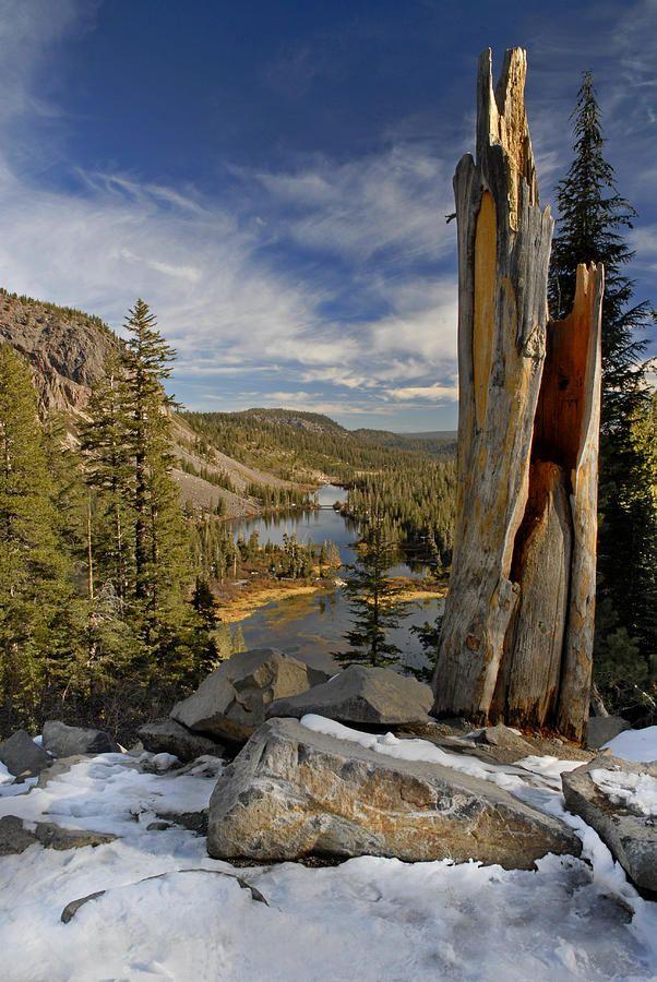 In The High Sierras Ca Rocks Pinterest