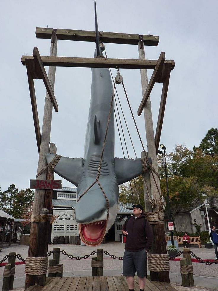 Jaws Photo Op