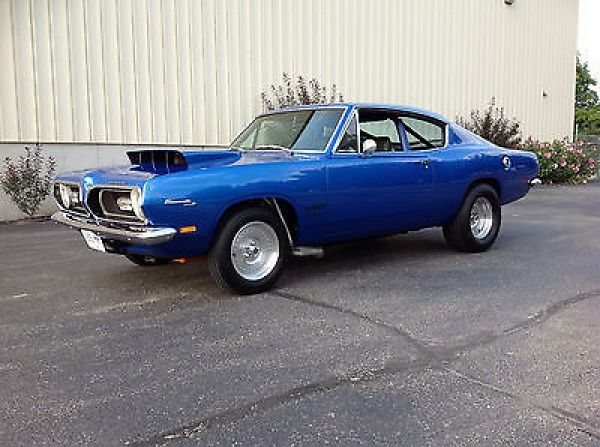 17 best images about plymouth on pinterest plymouth for Barracuda fish for sale