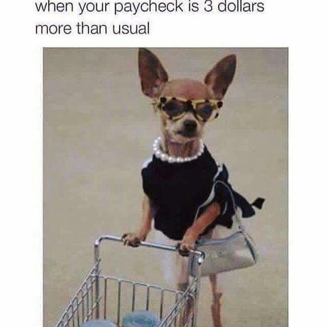 Funny Work Meme Tumblr : Best funny memes about work ideas on pinterest