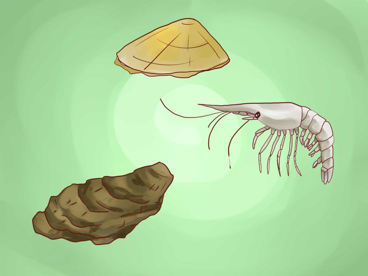 How+to+Create+Lobster+Farms+--+via+wikiHow.com