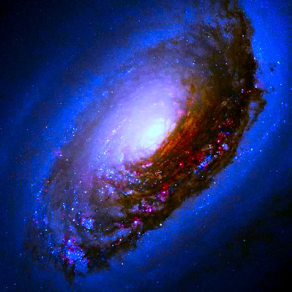 """The Black Eye Galaxy (also called Sleeping Beauty Galaxy; designated Messier 64, M64, or NGC 4826) was discovered by Edward Pigott in March 1779, and independently by Johann Elert Bode in April of the same year, as well as by Charles Messier in 1780. It has a spectacular dark band of absorbing dust in front of the galaxy's bright nucleus, giving rise to its nicknames of the """"Black Eye"""" or """"Evil Eye"""" galaxy."""