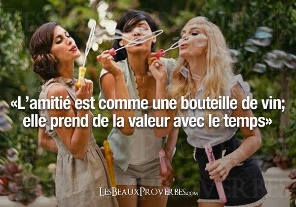 Friendship is like a bottle of wine, she will increase in value over time. French quote, citation française.