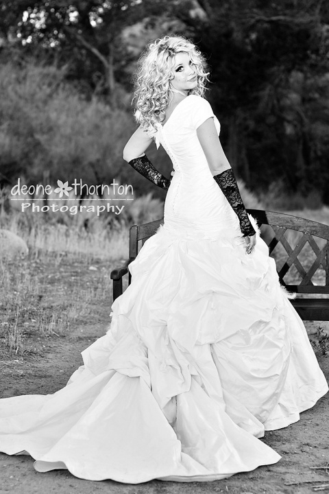 1000  images about Temple (LDS) Gowns on Pinterest  Wedding dress ...