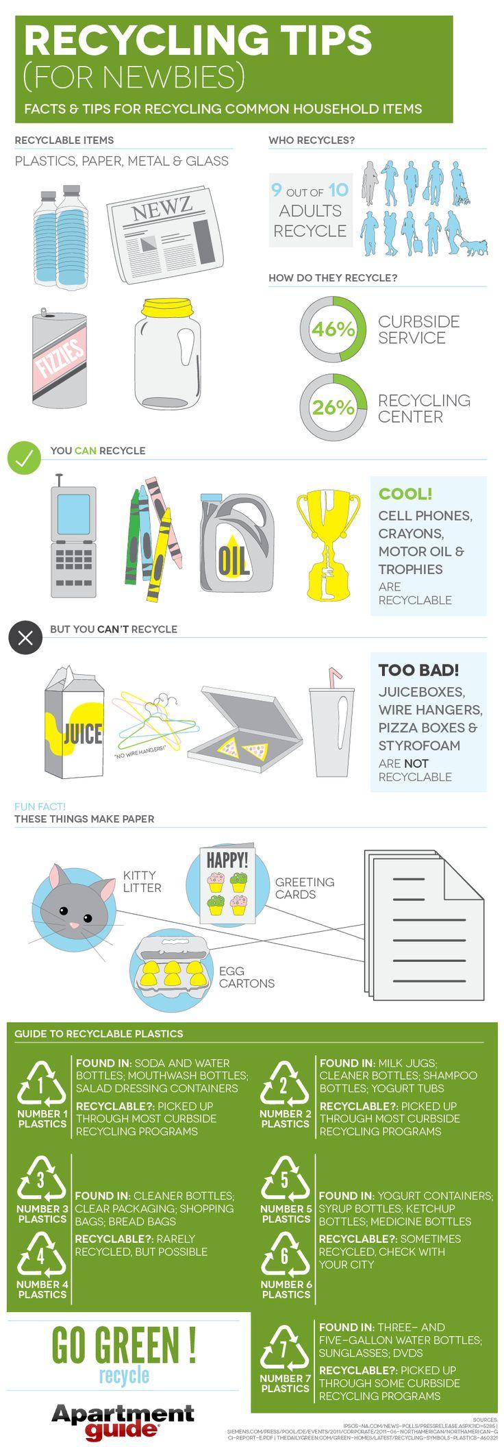Informative essay on littering