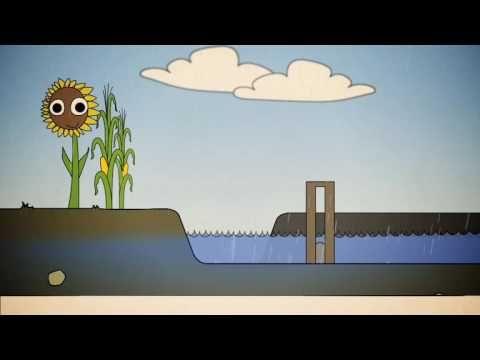 Biologie -  Schoon, Voldoende & Veilig Water - filmpje van YouTube