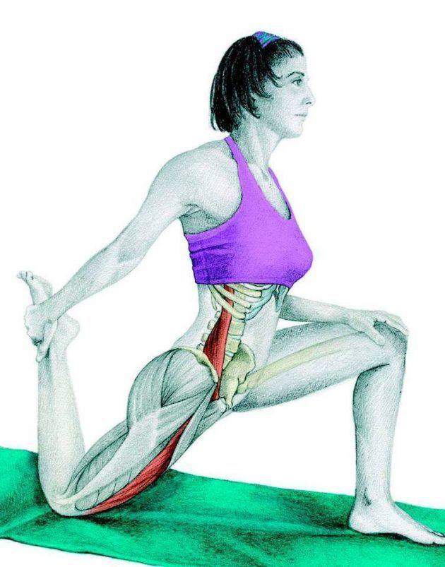 упражнения стретчинг мышцы в картинках