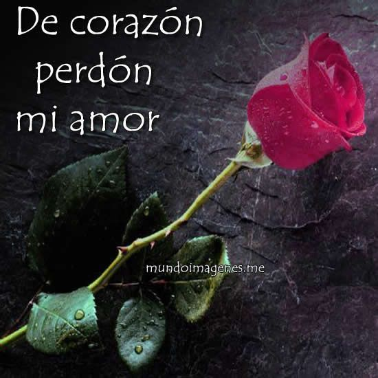 Imagenes De Perdoname Mi Amor Emotivas Para Dedicar Mundo Imagenes