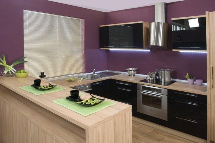 peinture cuisine couleur prune et plan de travail en bois clair
