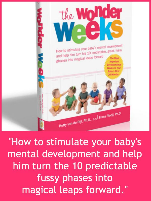 THE WONDER WEEKS: A great book that explains how a baby's perception of her world changes as she grows. Indispensable for a parent wondering what his or her baby is thinking!