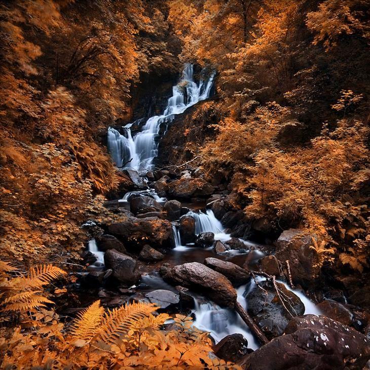 Singela cachoeira com as flores de outono