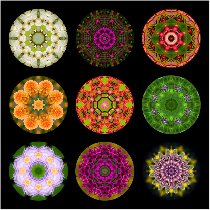 seasons spring mandala art, new zealand, Susan Cleaver, Artist, mozaics, mandalas, collage, stock photos, digital art and more, experiencing the visual element of nature through photography