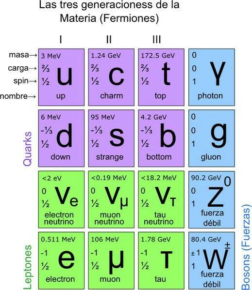 tabla de partículas elementales del modelo estándar. los fermiones se caracterizan por tener spin-semientero y forman la materia ordinaria. los bosones tienen spin entero y son los portadores de tres de las cuatro interacciones de la naturaleza. aunque no aparezca en la tabla, los quarks y gluones también tienen carga de color, aunque ésta queda confinada en el núcleo atómico.
