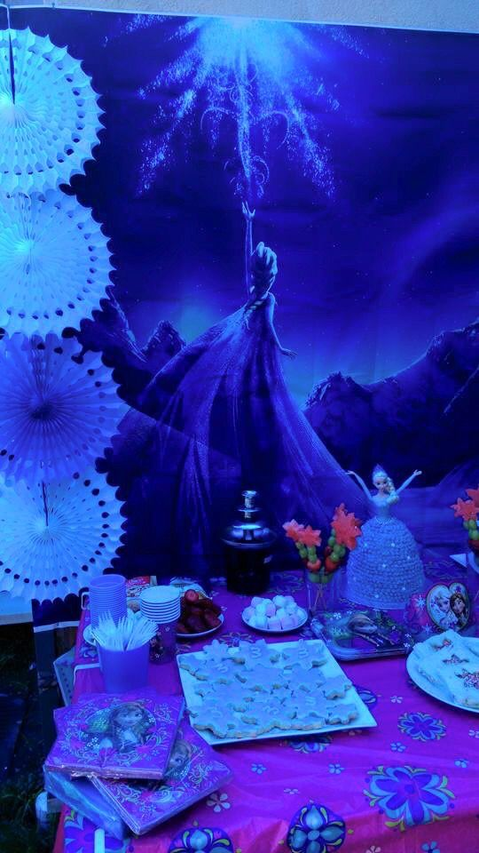 Frozen Party - vinyl backdrop