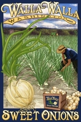 """Sweet Onions, Walla Walla, Washington, Lantern Press Poster. """"Walla Walla"""" is a Native American word meaning """"many waters."""" The area has an abundance of trees and a moderate climate, with an average temperature range of 27 to 91 Degrees. The hardy Walla Walla Sweet Onions survive the nearly 18 inches of precipitation each year."""