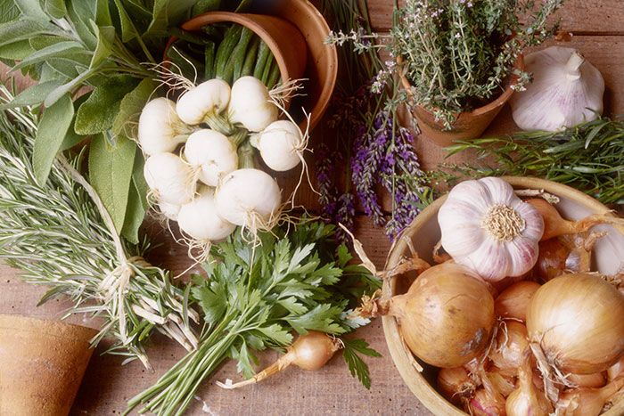 Специи против рака: имбирь, куркума, розмарин, чеснок, перец чили, петрушка, мята, базилик - в чем выражаются их антираковые свойства и как их включить в свой рацион.