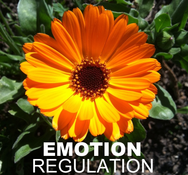 Increasing awareness of existential freedom to help in the struggle to regulate emotions.