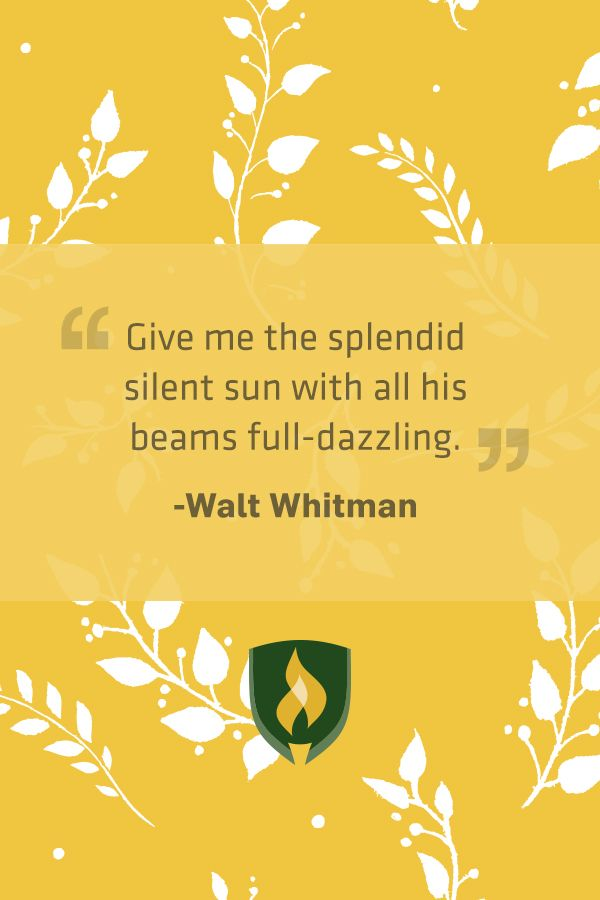 give me the splendid silent sun by walt whitman 1 / give me the splendid silent sun with all his beams full-dazzling, / give me autumnal fruit ripe and red from the orchard, / give me a field where the unmow'd grass.