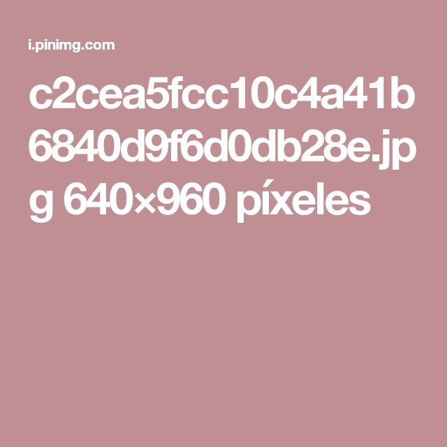 c2cea5fcc10c4a41b6840d9f6d0db28e.jpg 640×960 píxeles