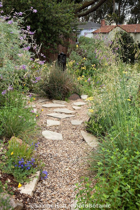 Gravel Path And Stepping Stones Through California Native