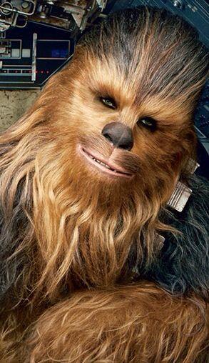 Chewbacca                                                                                                                                                                                 More