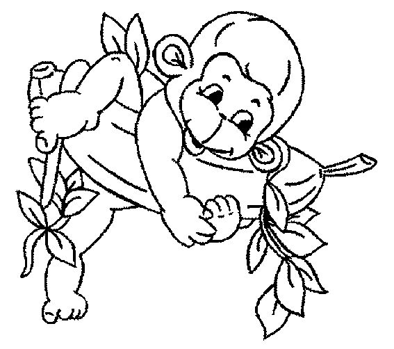 coloring pages of monkeys free monkey coloring pages 3
