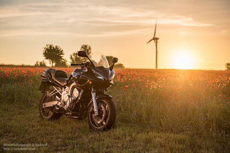 Yamaha FZ6 Fazer at sunrise. The early bird... #yamaha #yamahamotorrad #fazer #fz6 #motorradfotografie #motorrad #sonnenaufgang #sunrise #poppyseed #mohn #summer #motorbike #motorcycle